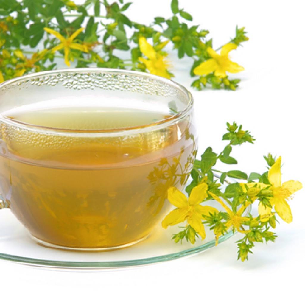 Чай из зверобоя польза и вред как заваривать и пить картинки